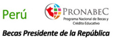 Logo integrado Peru 2